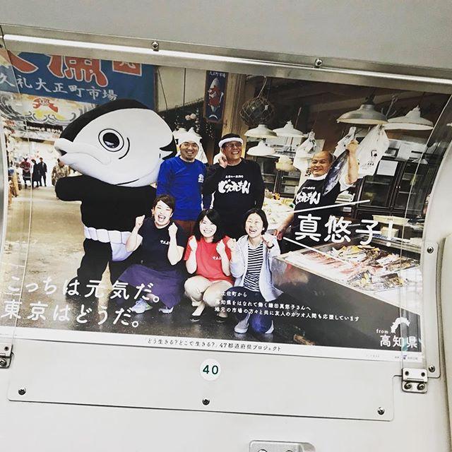 お江戸のチョーナンから送られてきた画像。東京メトロと山の手線の電車内に貼られているそうな!ブルーのTシャツが #山本鮮魚店 の店長ぜよー!女将も写りたかったがその日はあいにくの不在でした#大正町市場 #久礼大正町市場 #高知 #カツオ人間